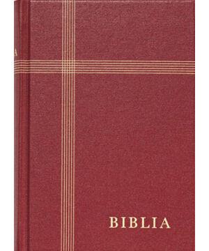 Biblia - RUF (kicsi) vászon