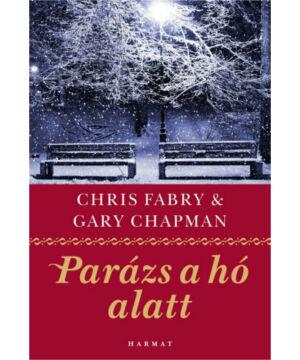 A parázs a hó alatt - Gary Chapman