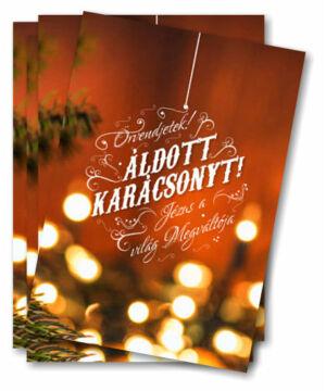 Kari. ajándékkísérő - 06 (10db)