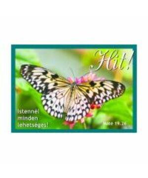 Igés Kártya - UIK21 (10db)