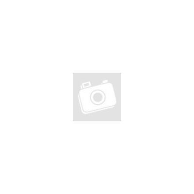 ÚjKároli Biblia - bordó