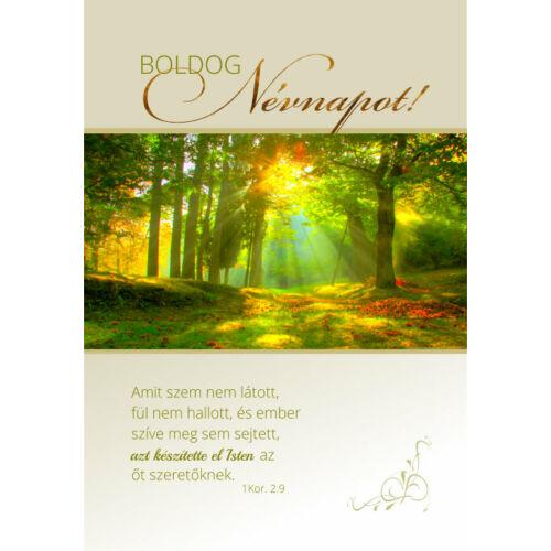 képeslap - Extra Névnap 10 (10db)