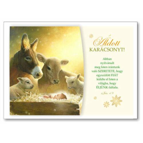 Karácsonyi képeslap - nyílt 06