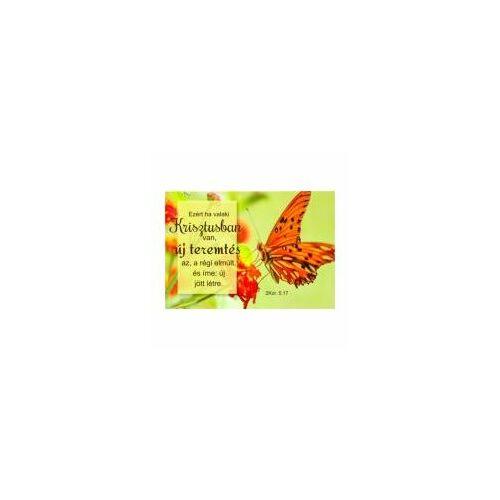 Igés Kártya - UIK27 (10db)