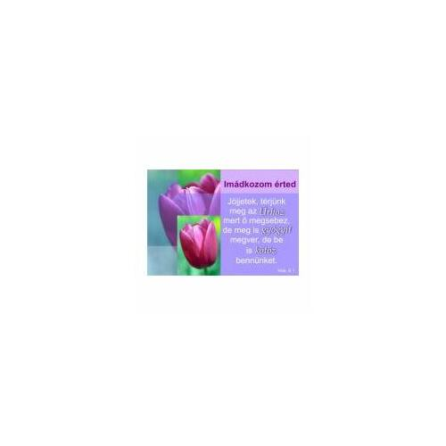 Igés Kártya - UIK28 (10db)