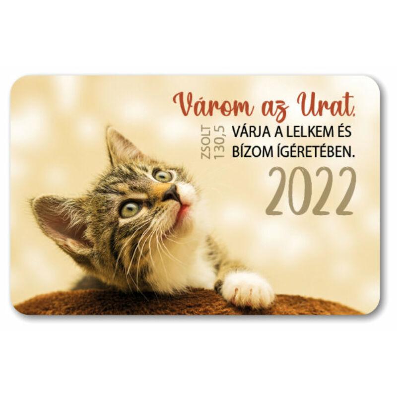 Kártyanaptár csomag (10db) 06